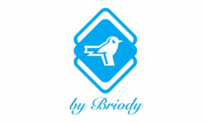 by brody logo